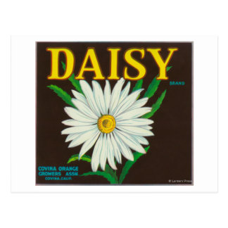 Daisy Brand Citrus Crate Label Postcard