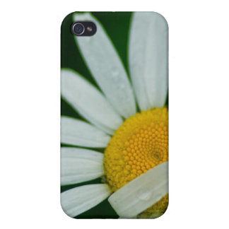 daisy cases for iPhone 4