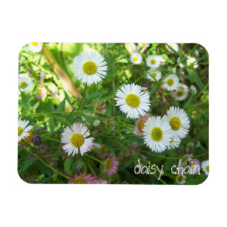 Daisy chain magnet