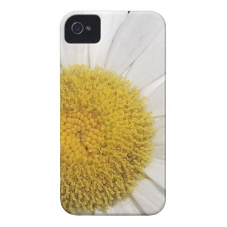 Daisy Close-Up Case-Mate iPhone 4 Cases