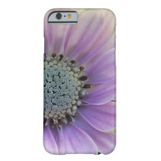 Daisy close up phone case