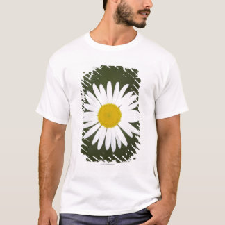 Daisy close up. T-Shirt