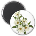 Daisy Cluster Magnet