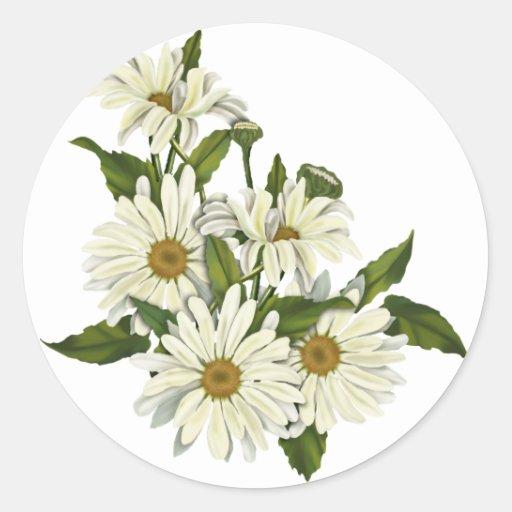 Daisy Cluster Round Sticker