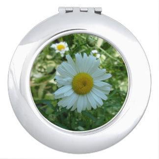 Daisy Compact Travel Mirror