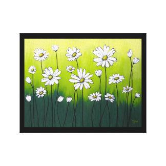 Daisy Crazy Canvas Prints