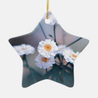 Daisy crazy ceramic star decoration