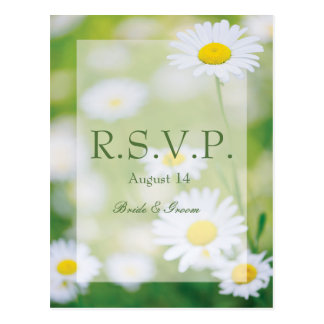 Daisy Daisies Flower Floral Summer Wedding RSVP Postcard