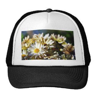 Daisy Daisies Flowers Trucker Hat