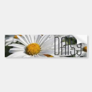 Daisy Daisy Bumper Sticker