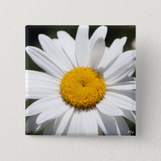 Daisy Darling 15 Cm Square Badge