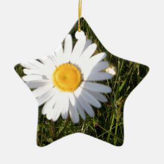 Daisy Day Christmas Ornament