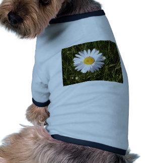 Daisy Day Dog Tee