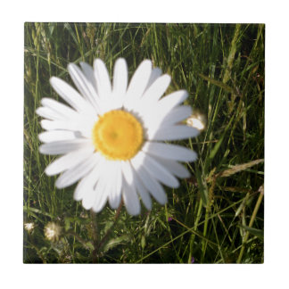 Daisy Day Ceramic Tiles