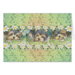 Daisy Dogs Yorkie Puppies Greeting Card