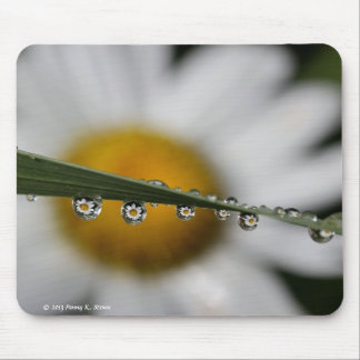 Daisy Drops nature photography mousepad