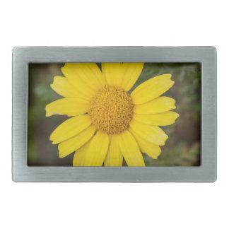 Daisy flower cu yellow belt buckles
