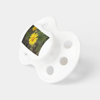 Daisy flower cu yellow dummy