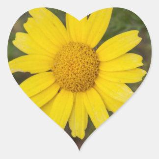 Daisy flower cu yellow heart sticker