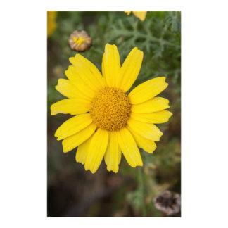 Daisy flower cu yellow stationery
