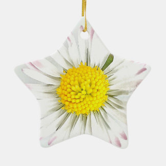 Daisy Flower Dble-Sided Star Ornament
