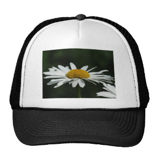 Daisy Flower Mesh Hats
