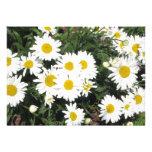 Daisy Flower Invitation