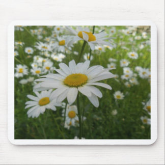 Daisy Flower Mouse Pads