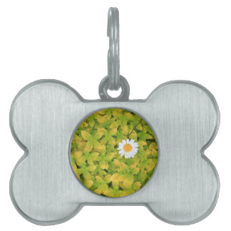 Daisy Flower Reaching For The Sun Pet ID Tag