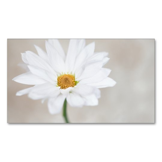 Daisy Flower White Yellow Daisies Blossom Floral Magnetic