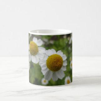 Daisy Flowers Coffee Mug