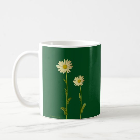 Daisy flowers on green background - Summer Coffee