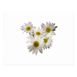 Daisy Heart Postcards