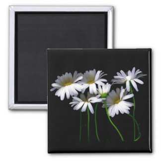 Daisy III Square Magnet