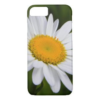 Daisy in Bloom iPhone 7 Case