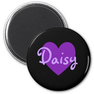 Daisy in Purple Magnet