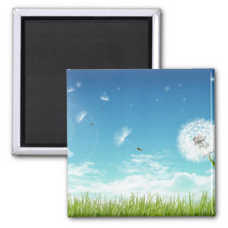 Daisy In The Field Magnet