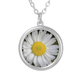 daisy in the garden silver plated necklace