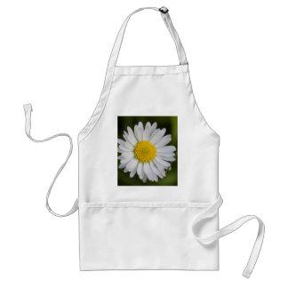 daisy in the garden standard apron