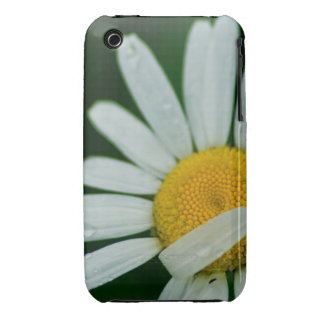 daisy iPhone 3 Case-Mate case