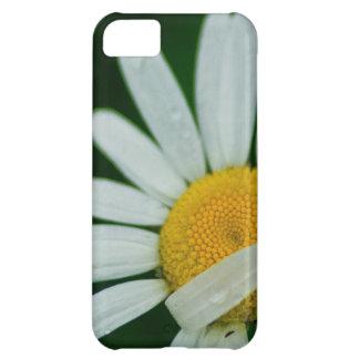 daisy iPhone 5C case