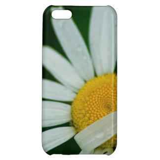 daisy iPhone 5C cases