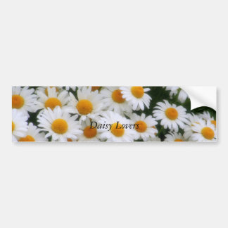 , Daisy Lovers Bumper Sticker
