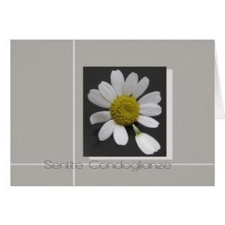 daisy on grey italian sympathy card