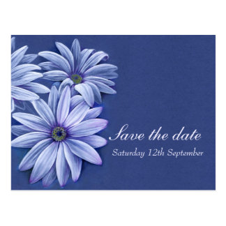 Daisy osteospermum wedding save the date card postcard