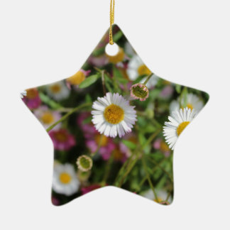 Daisy photo Flower photograph Floral design Ceramic Star Decoration
