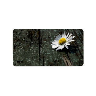 Daisy Solitude Label