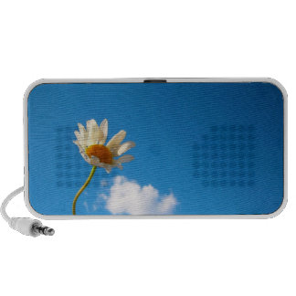 Daisy sounds mini speakers