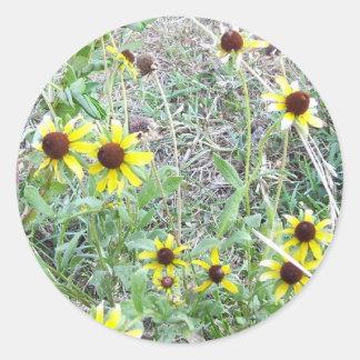 Daisy Sunflowers stickers