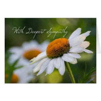 Daisy Sympathy Card